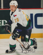Robert Pochyly - Texas Hockey - Fort Worth Hockey - Fort Worth Brahmas Hockey - WPHL Hockey - Western Proffessional Holckey League- CHL Hockey - Central Hockey League